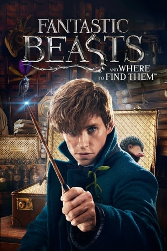 Les Animaux Fantastiques (Fantastic Beasts And Where To Find Them) Filmstoon
