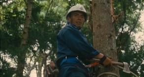wood-job-3