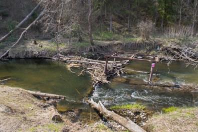 Через реку пришлось переходить вброд.