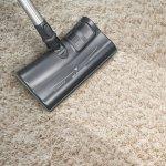 Majestic-Power-Nozzle-Carpet-2048x2048_1024x1024@2x