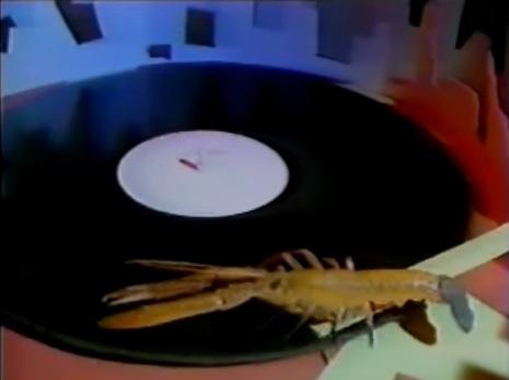 Rock Lobster!