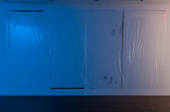 Hilton Als, Candy, 2016, 194 x 96 inches, screen print on cellophane.