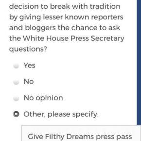 Filthy Dreams' Mainstream Media Accountability Survey