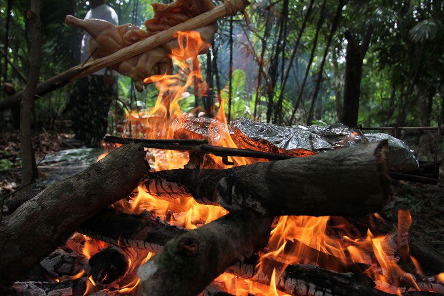 Lunch I Amazonas!