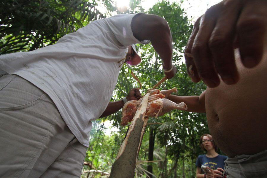 Grillspett-i-amazonas