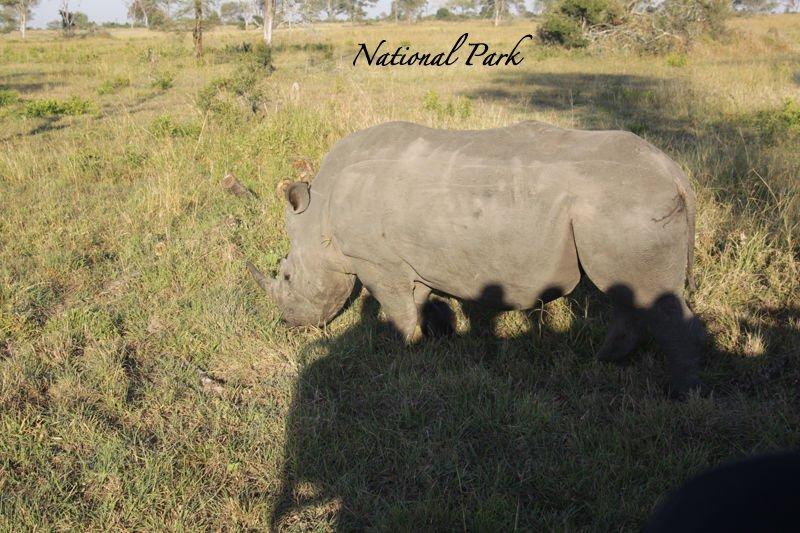 national-park-001