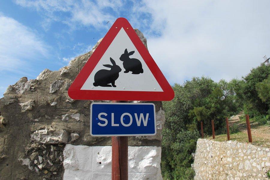 sign on Gibraltar rock