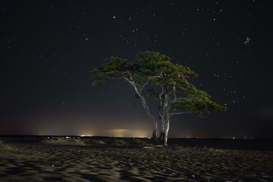 ahus-sweden-night-photo-5