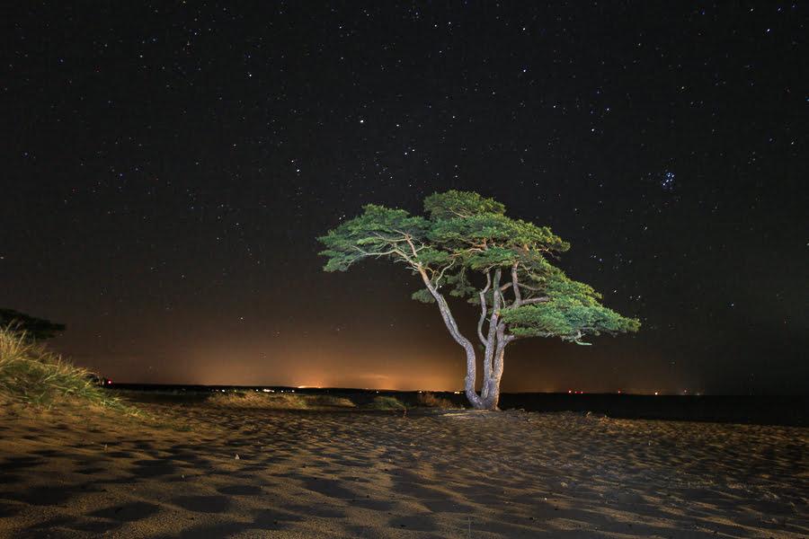 ahus-sweden-night-photo-6