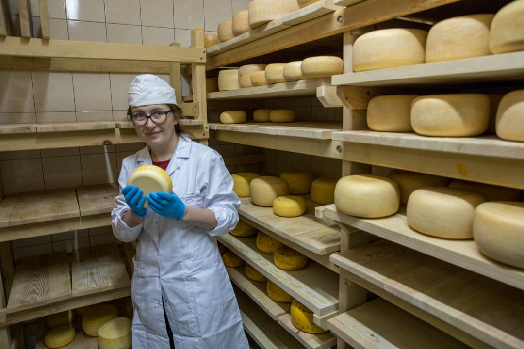 Cheese workshop in Poland