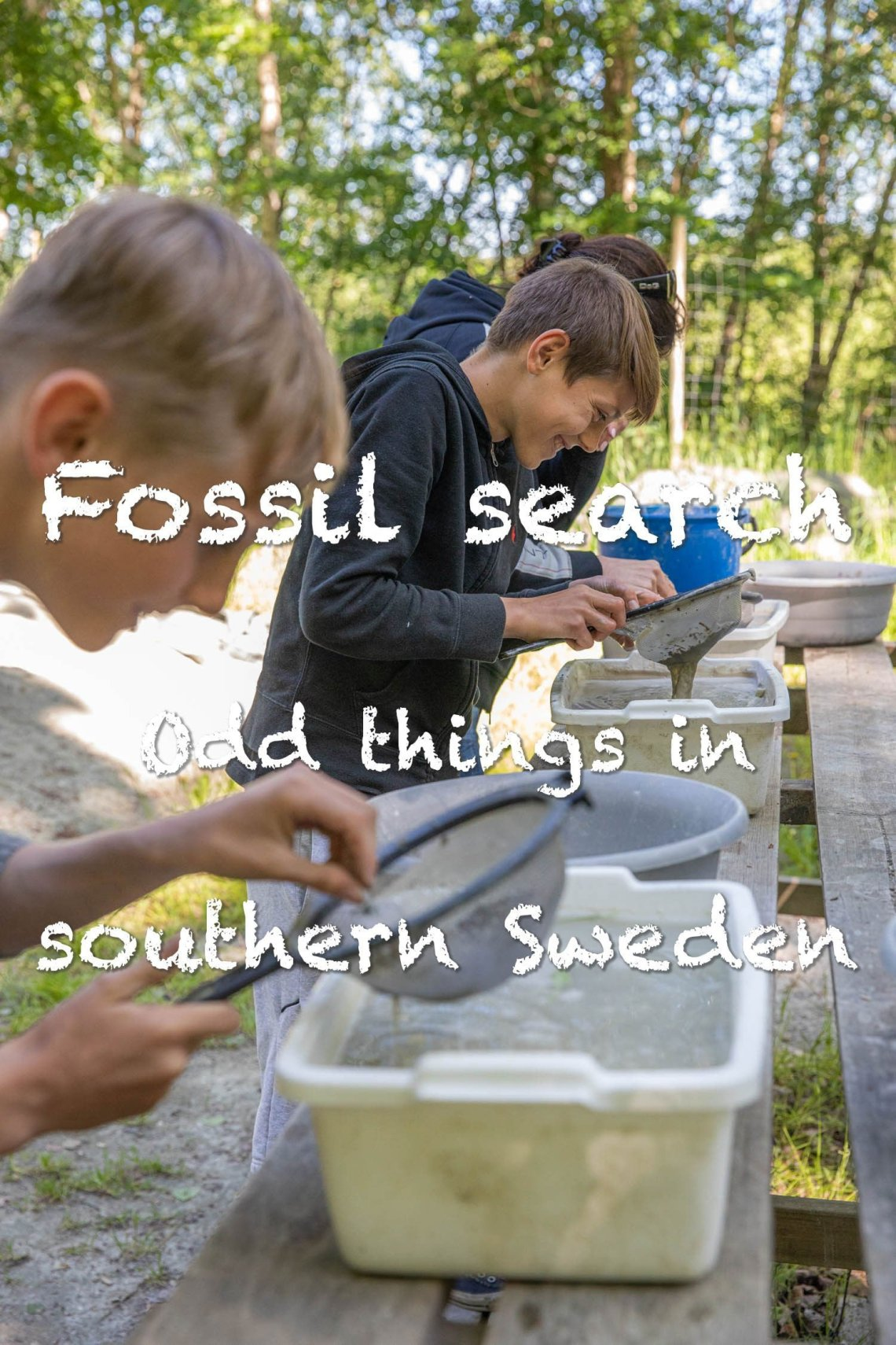 Fossil search - Odd thing in southern Sweden