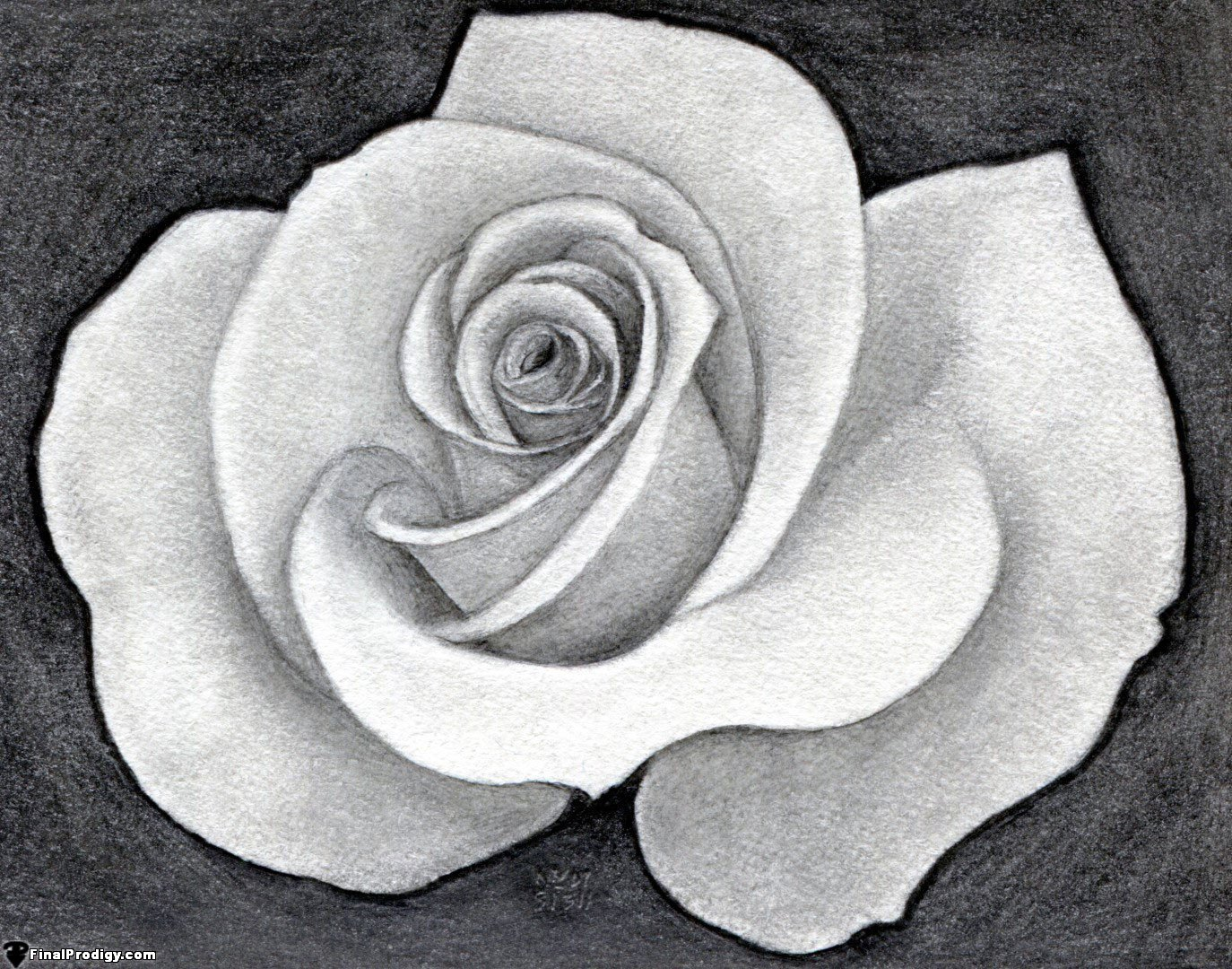 How to Draw a Pretty Rose - FinalProdigy.com