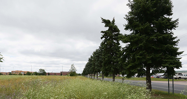 United Properties is now planning a 319,000-square-foot industrial building — instead of two buildings totaling 322,000 square feet — at 10100 89th Ave. N. and 10115 County Road 81 in Maple Grove. (Staff photo: Bill Klotz)