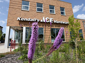 Kendall's Ace Hardware, 840 Payne Ave. in St. Paul, was obliged to follow B3 Guidelines during construction two years ago because it received more than $1.4 million in aid from city development programs. (Staff photo: Bill Klotz)