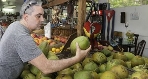 Shopper Julian Fojon-Losada, of Georgia, checks a coconut June 9 at a local fruit store in the Little Havana area of Miami. The Commerce Department reported Thursday that consumer spending rose 0.9 percent last month. (AP Photo: Alan Diaz)