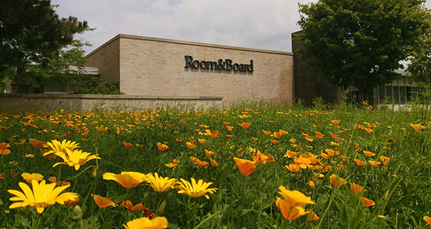 When Room & Board expanded a few years ago in Golden Valley, it replaced turf grass with native plants to create an urban meadow. The use of such meadows to absorb rainwater, provide native habitat and reduce costs will be discussed Thursday at the United States Green Building Council conference in St. Paul. (Submitted photo)