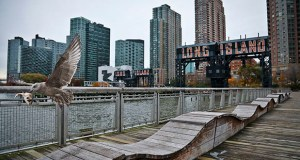 Long Island City already had the largest number of apartments currently under construction in New York City before Amazon announced it would put a new headquarters in the area. In this Nov. 13 photo, a sea gull flies off holding fish scraps near a former dock facility at Gantry State Park in the Long Island City section of the Queens borough in New York. (AP Photo: Bebeto Matthews)