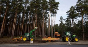 If Tesla doesn't clear trees near Berlin by mid-March before the wildlife breeding period, construction could be delayed by six to nine months, local officials have warned. (Bloomberg photo)