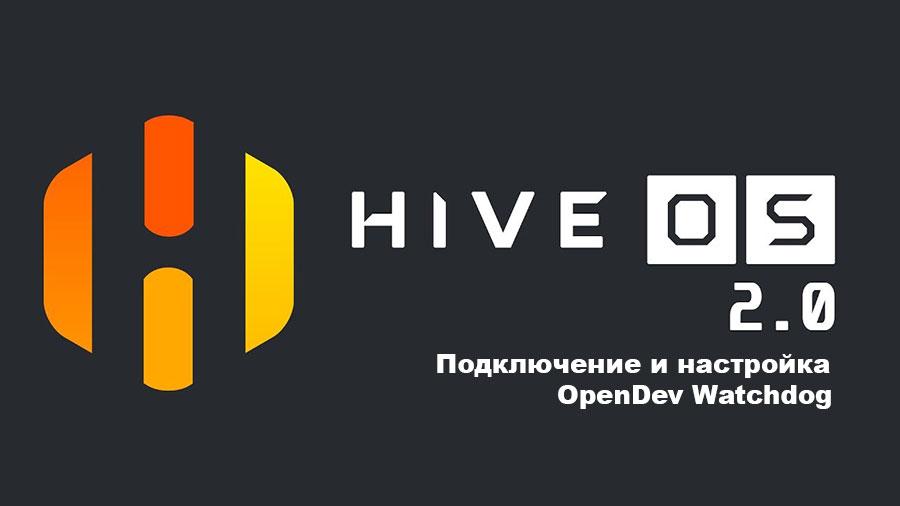 Подключение и настройка OpenDev Watchdog в HIVE OS.