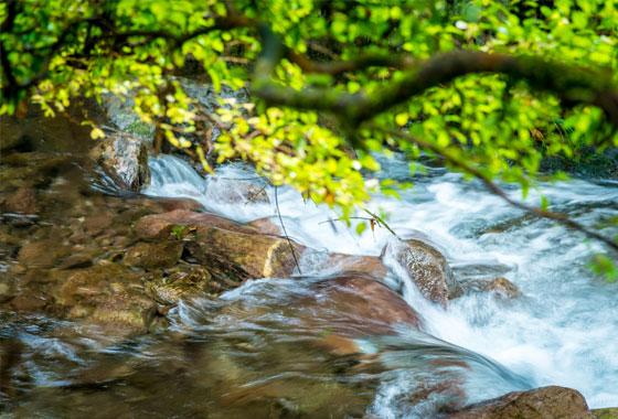 River flowing water