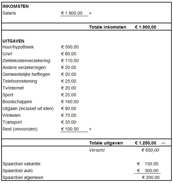 Inkomsten- en uitgaven overzicht sheet voorbeeld