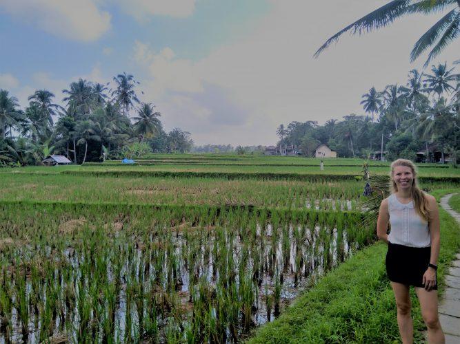 Bali Ubud rijstvelden rondreis