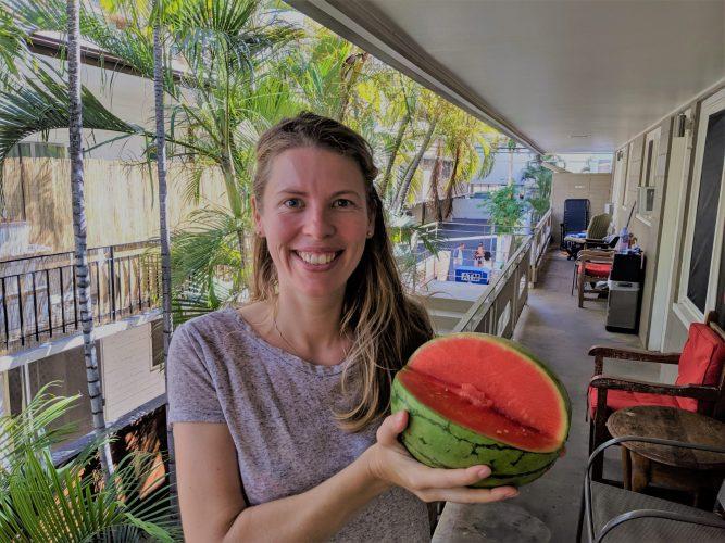 Broker vergelijken inhoud meloen hawaii