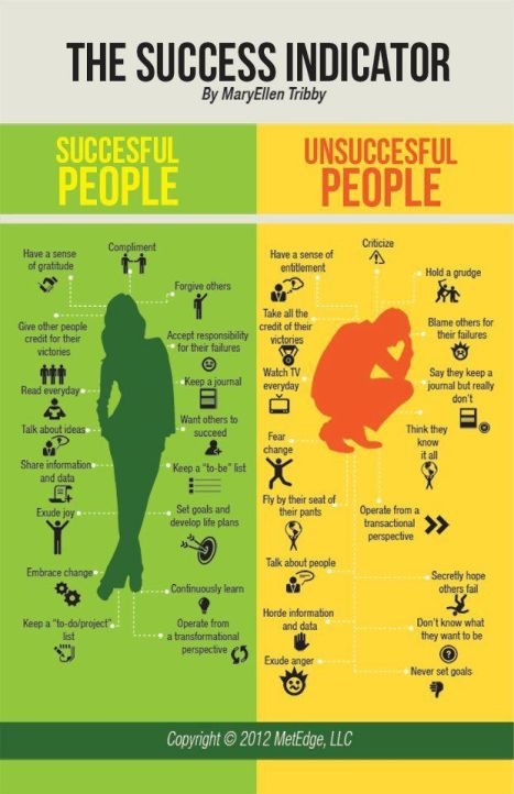 Infographic - The Success Indicator.