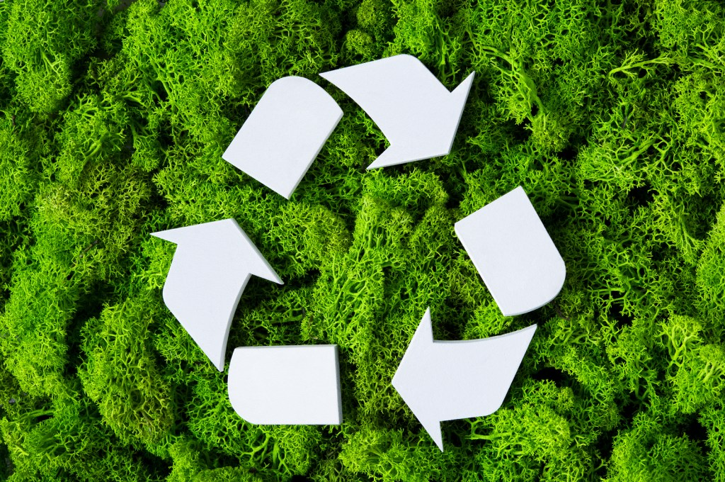 going green in your business