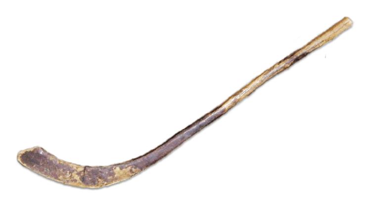 Hockey Stick