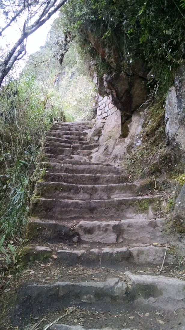 Trail to Huayna Picchu.