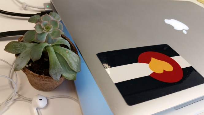 closed macbook with plant and colorado sticker