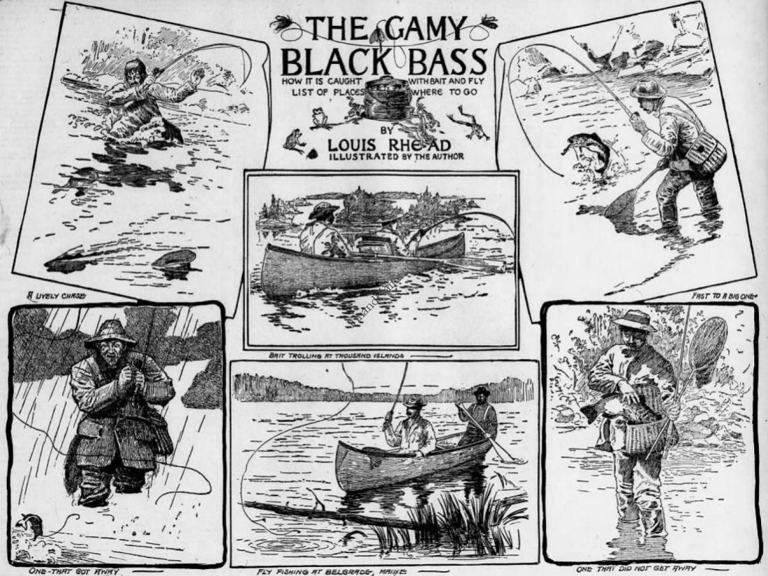 Louis Rhead Gamy Black Bass