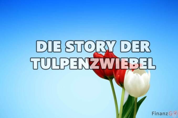 Die Story der Tulpenzwiebel! Wertpapier?