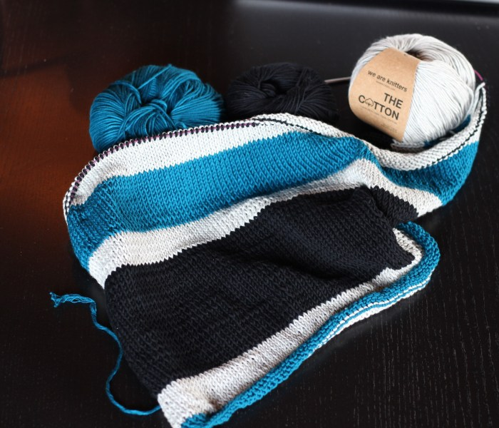Denali Sweater Teil 1 (die Planung)