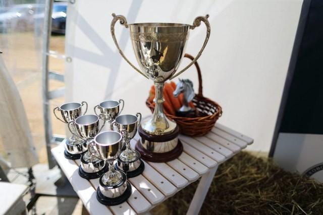 Russian Open Polo Championship 2016