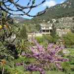 Die Finca Son Salvanet bei Valldemossa