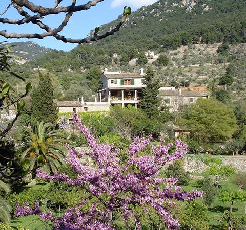Ferienhäuser mieten Mallorca