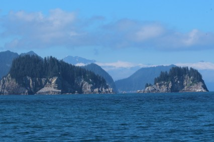 Kenai-Fjords-National-Park-alaska-ecoturismo-35