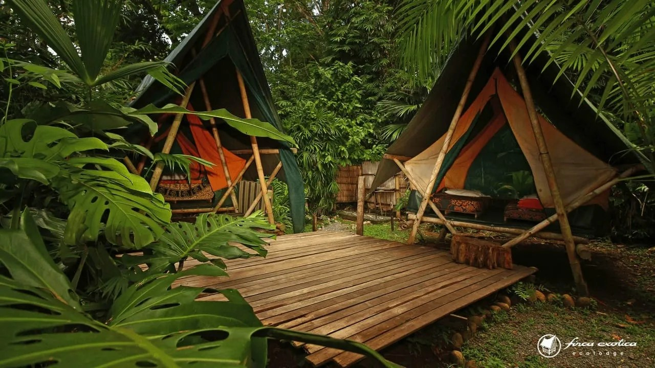 Image result for camping Corcovado National Park Costa Rica