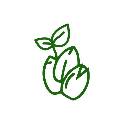 fincann_icons_V2_seeds