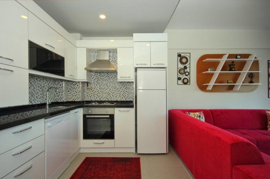 mini casas modernas