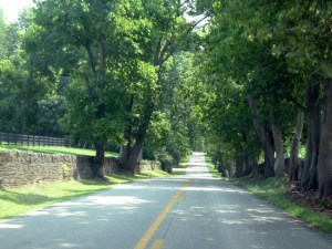 The Kentucky Highway Photograph