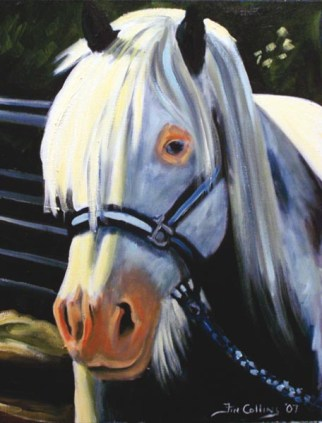 hairy-horse-2