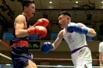 ボクシング23日2