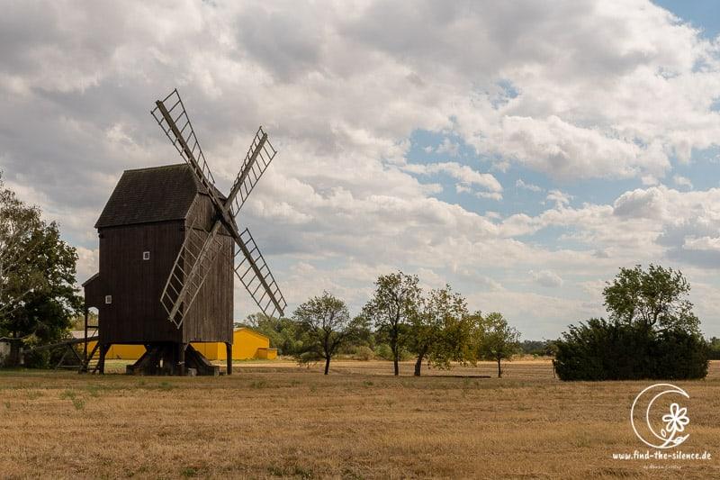 Windmühle im Tierfland