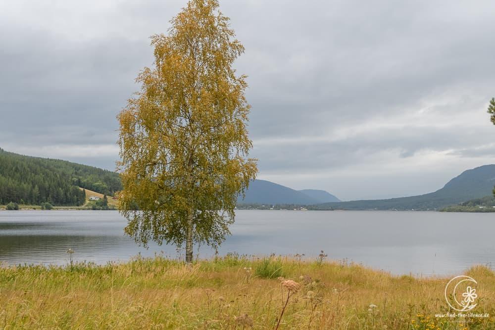 Einsame Plätze am See sind auch in Norwegen begehrt