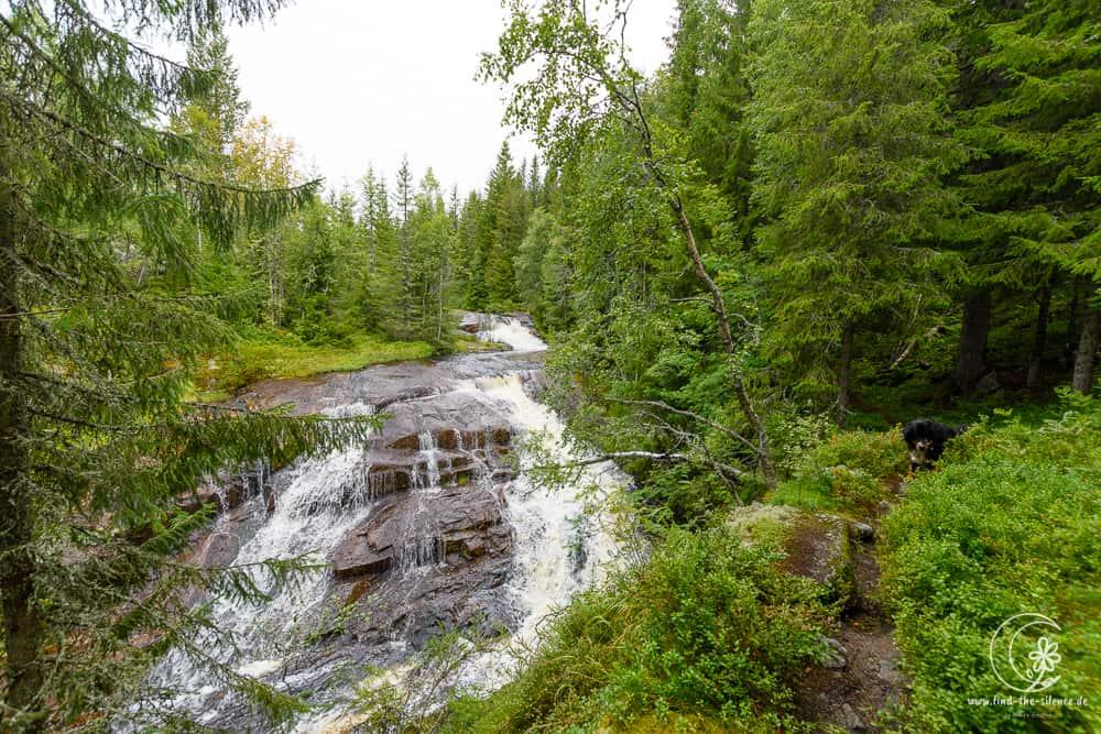 Einer der unzähligen unbenannten Wasserfälle