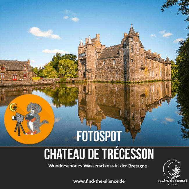 Chateau de Trécesson