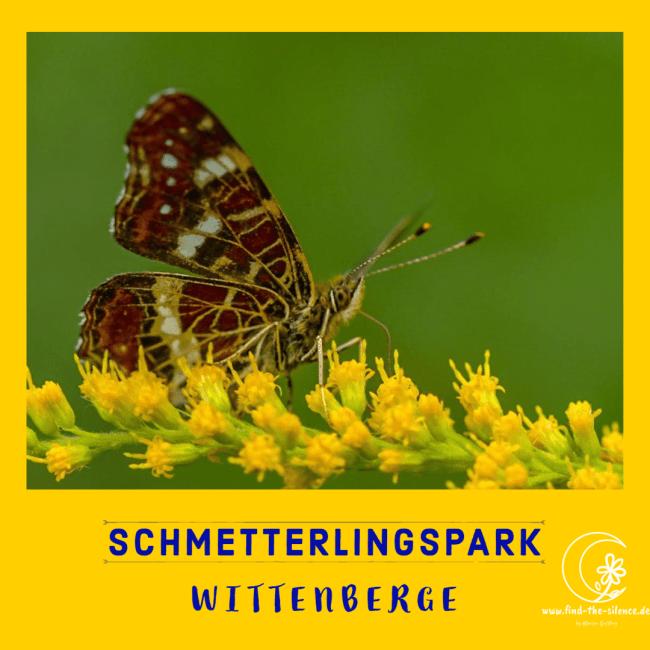 Schmetterlingspark Wittenberge
